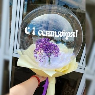 Гипсофила в шаре Deco Bubble на 1 сентября