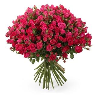 Букет из 49 малиновых кустовых роз, 60 см