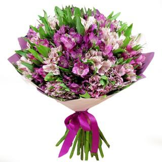Букет из 19 бело-фиолетовых альстромерий