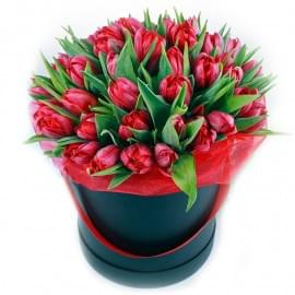 Коробка из 51 красного пионовидного тюльпана