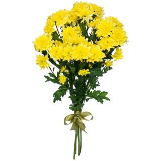 """Букет из 9 хризантем """"Zembla yellow"""""""