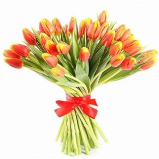 Букет из 35 персиковых тюльпанов
