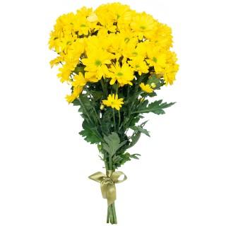 "Букет из 9 хризантем ""Bacardi yellow"""