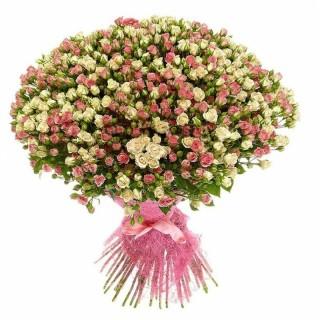 Букет из 101 бело-розовой кустовой розы, 60 см