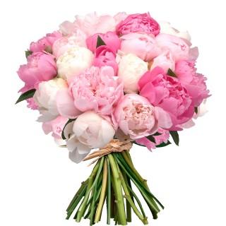 Букет из 25 бело-розовых пионов