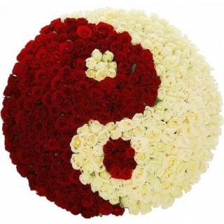 """Розы в корзине в форме """"Инь-Янь"""", 401 шт"""