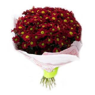 Букет из 25 красных хризантем