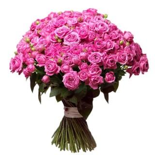 """Букет из 75 пионовидных кустовых роз """"Мисти Баблс"""""""