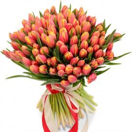 Букет из 101 персикового тюльпана
