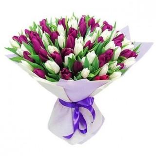 Букет из 101 бело-фиолетового тюльпана