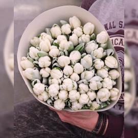 """Белые """"сахарные"""" тюльпаны, 49 шт"""