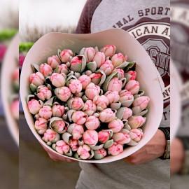 """Розовые """"сахарные"""" тюльпаны, 49 шт"""