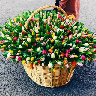Корзина из 301 ассорти тюльпана