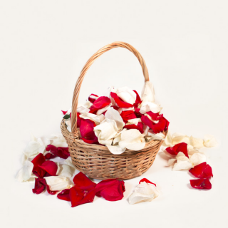 Красные и белые лепестки роз в корзинке (7 литров)