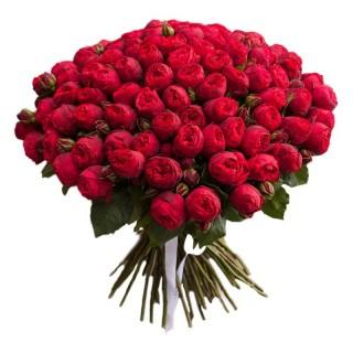"""Букет из 55 пионовидных кустовых роз """"Ред Пиано"""""""