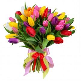 Букет из 49 ассорти тюльпанов