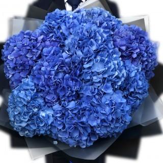 Букет из 11 синих гортензий