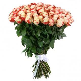 """Букет из 75 роз """"Свитнесс"""" (Эквадор)"""