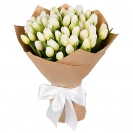 Букет из 49 белых тюльпанов