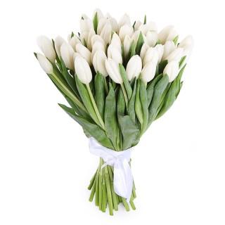 Букет из 45 белых тюльпанов
