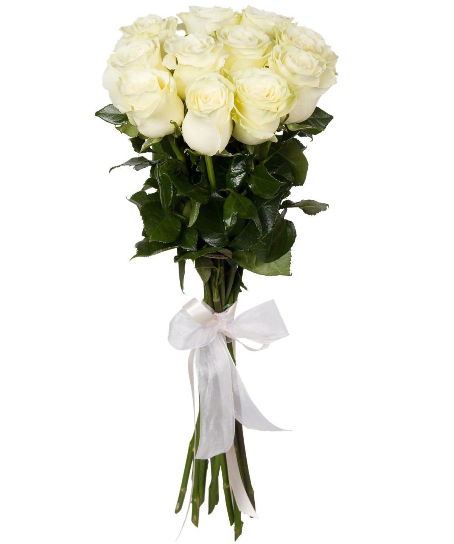 Розы белые маленькие картинки для
