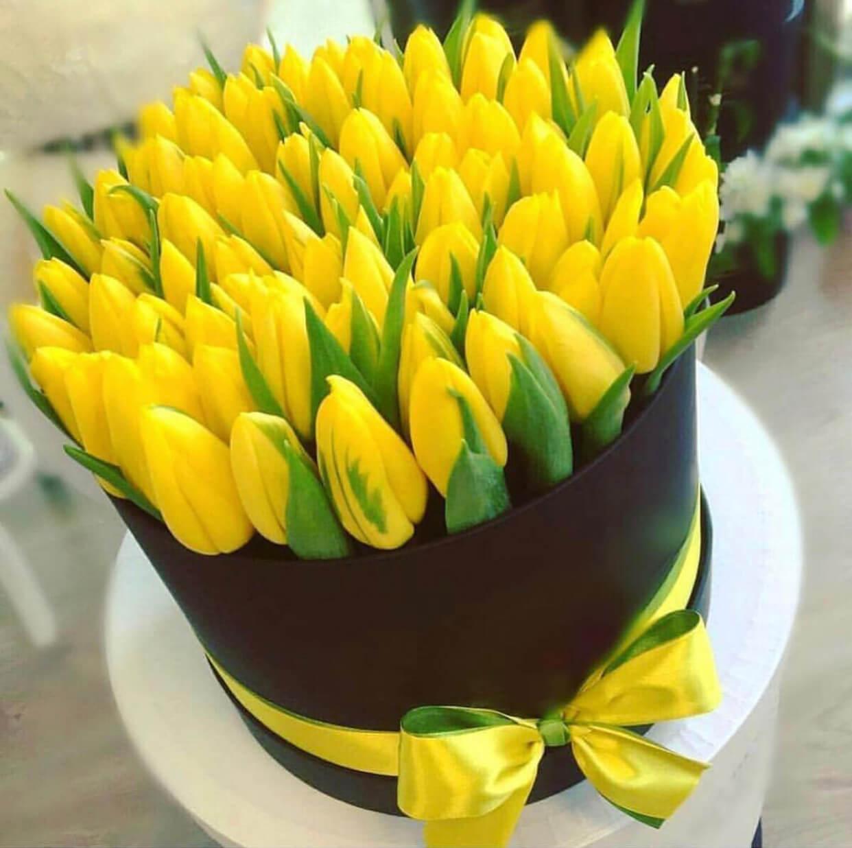 интересно, когда открытка с желтыми тюльпанами на день рождения аватан
